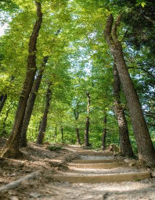 Znamenitosti Krajinski park Tivoli, Rožnik in Šišenski hrib
