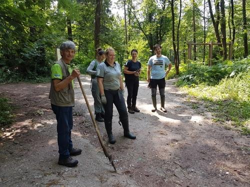 <p>  Odstranjevanje deljenolistne rudbekije; Foto: Andrej Verlič </p>
