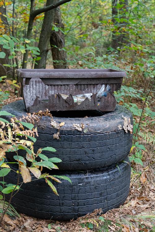 <p>  Iz ene od mejic smo odstranili tudi tri odslužene tovorne pnevmatike, ki v to okolje vsekakor ne sodijo.<br>  <br>  foto: Luka Šparl<br> </p>