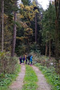 <p>  Največ odpadkov smo pričakovano odkrili ob gozdnih poteh.<br>  <br>  foto: Luka Šparl </p>