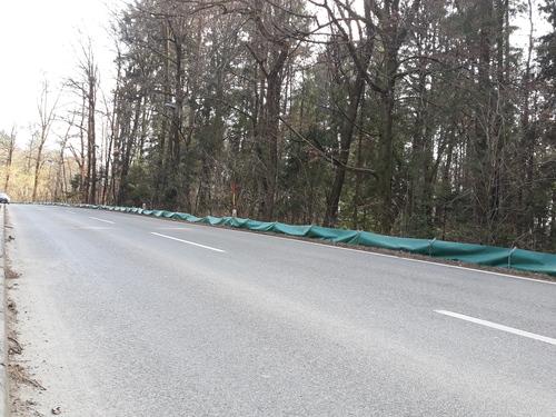<p>  Ograja na Večni poti, zmanjšuje število povoženih dvoživk; Foto: Luka Šparl </p>