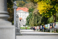 <p>  Plečnikova promenada - široka peščena površina z nizom betonskih svetilk na sredini je ena najpomembnejših Plečnikovih del.<br> </p> <p>  Foto: Luka Šparl </p>