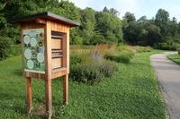 <p>  Čebelnik - dom za čebele samotarke </p> <p>  Foto: Luka Šparl </p>