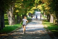 <p> Poti v mestnem parku Tivoli; Foto: Artinfoto.si </p>